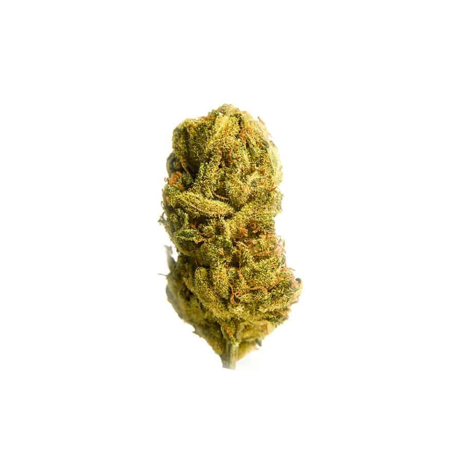Cannabis Light CBD Everweed - Fresh Mountain
